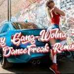 Crazy Gang – Wolna Chata (DanceFreak Remix)