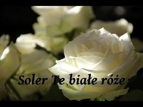 Soler – Te białe róże (OldSchool 90s 2020)